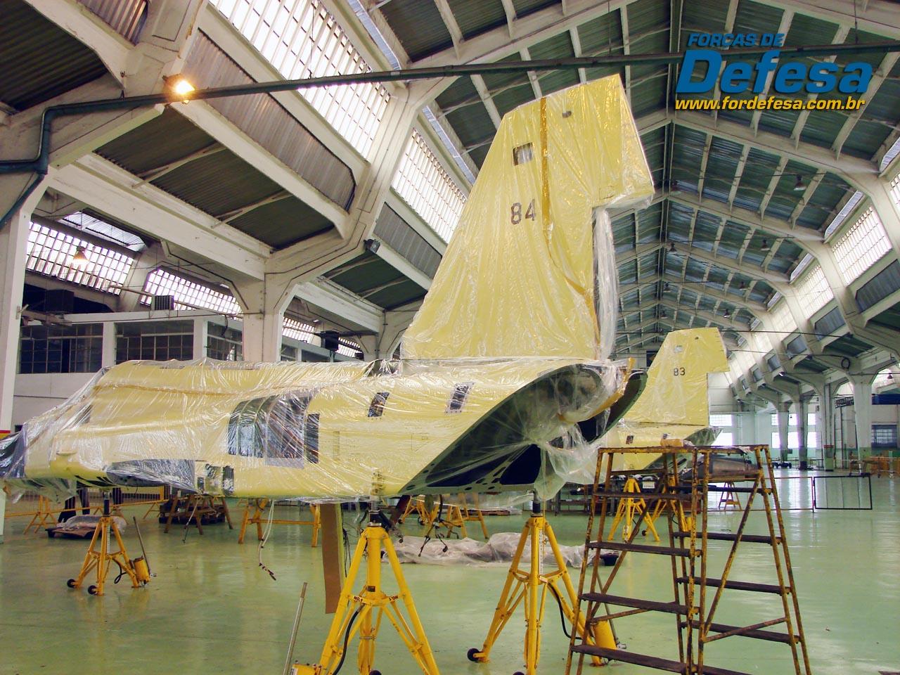 F-5E 4883 e 4884 no PAMA-SP - foto POGGIO