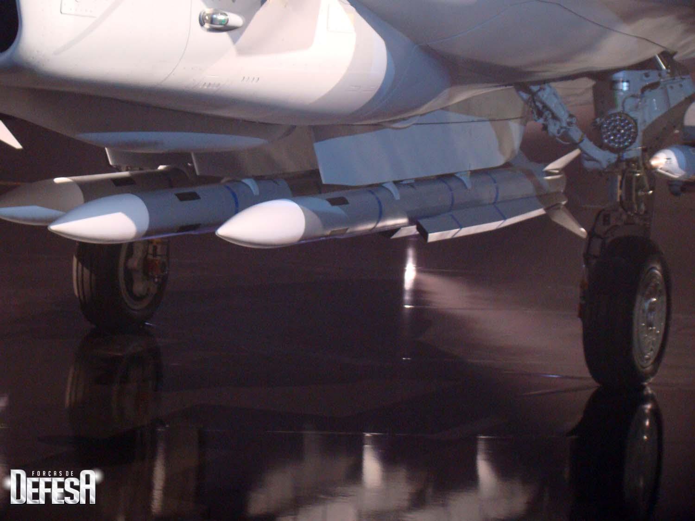 roll out Gripen E - 18-5-2016 - foto 20 Nunao - Poder Aereo