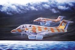 Pucara nas Malvinas - Carlos A Garcia
