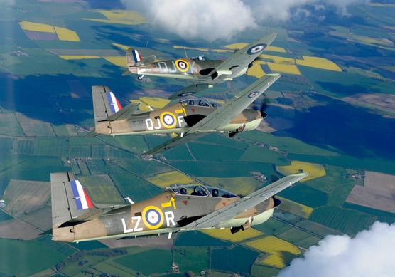 Spitfire Tucfire Spitano 3
