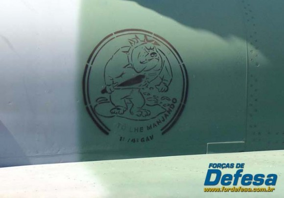 Bolacha do Esquadrão Pacau pintada na fuselagem de caça F-5EM - foto Nunão - Poder Aéreo - Forças de Defesa