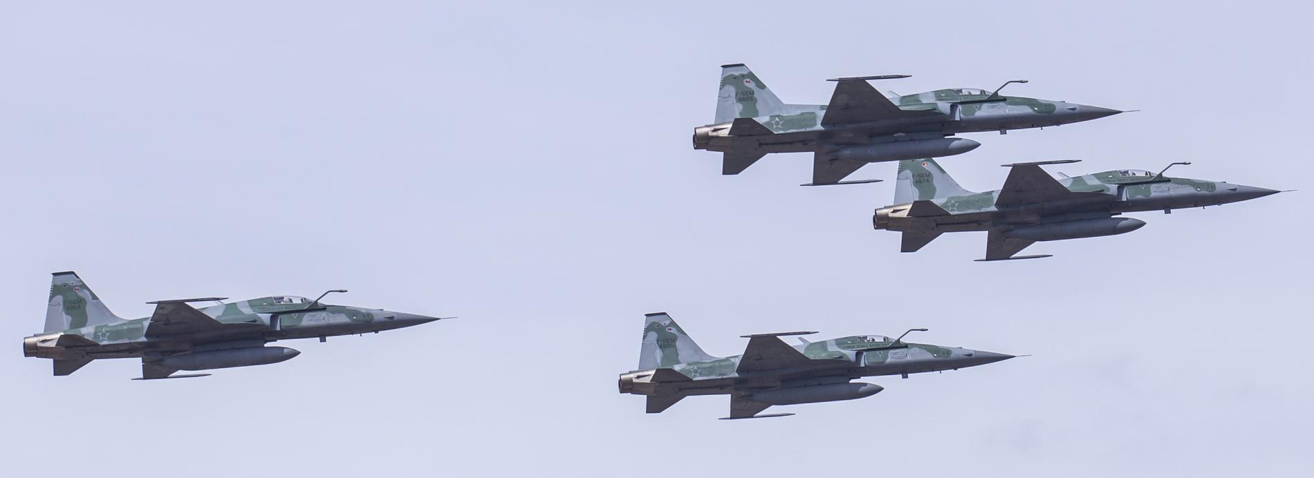 F-5 desfile 7 de setembro 2013 - foto FAB