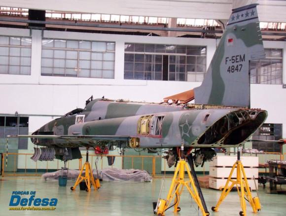 F-5EM 4847 no Domingo Aéreo 2013 PAMA-SP - Foto Nunão - Poder Aéreo - Forças de Defesa
