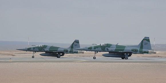Salitre 2014 - F-5EM - foto FACh via FAB