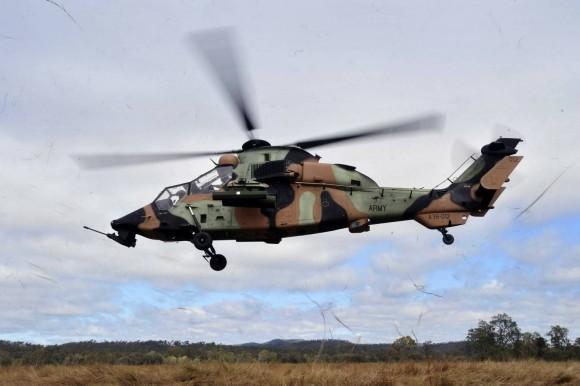 Aussie-Tiger-ARH-20110717