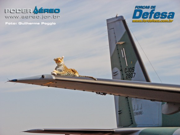 domingo aereo AFA 2015 C-105 01 - foto poggio