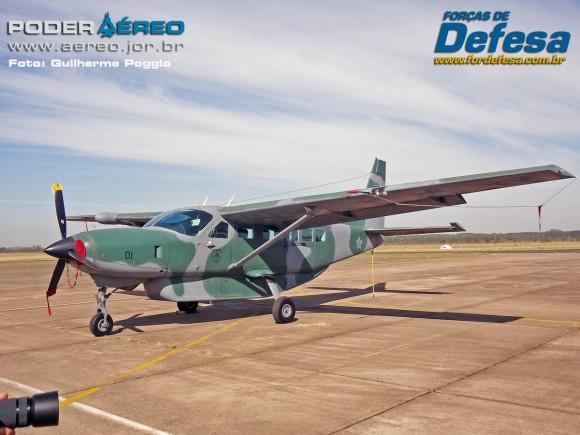 domingo aereo AFA 2015 C-98 Caravan - foto poggio