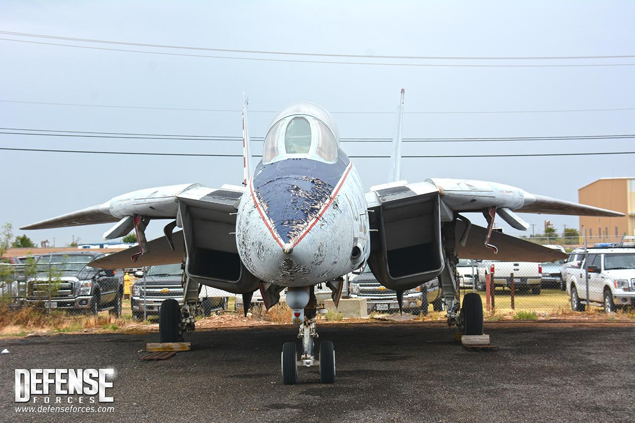 CAF F-14 - 7