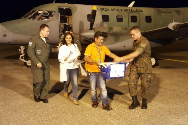 Transporte de figado por C-95 do Esquadrao Pastor - foto 2 FAB