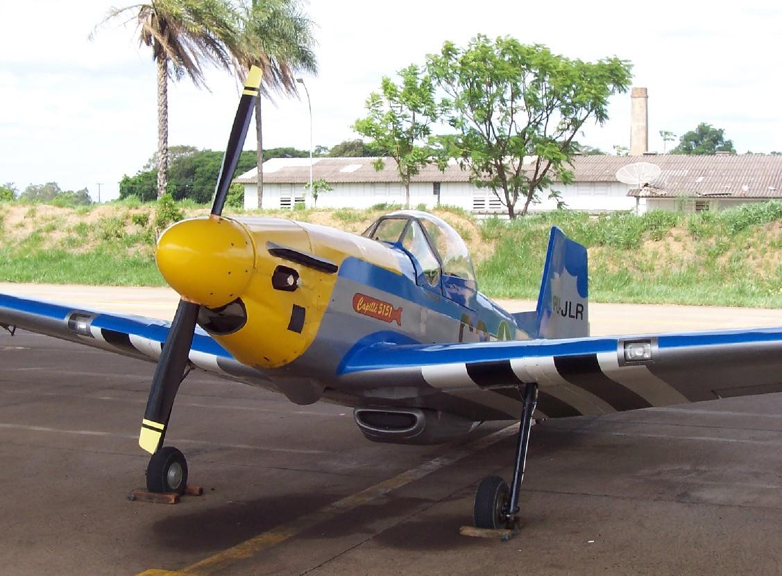 replica-p-51-mustang-em-escala-na-afa-2004-foto-nunao