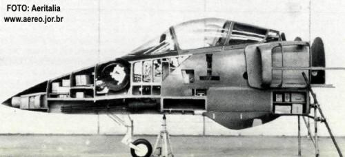 AMX-maquete-tam-real-3_foto-aeritalia