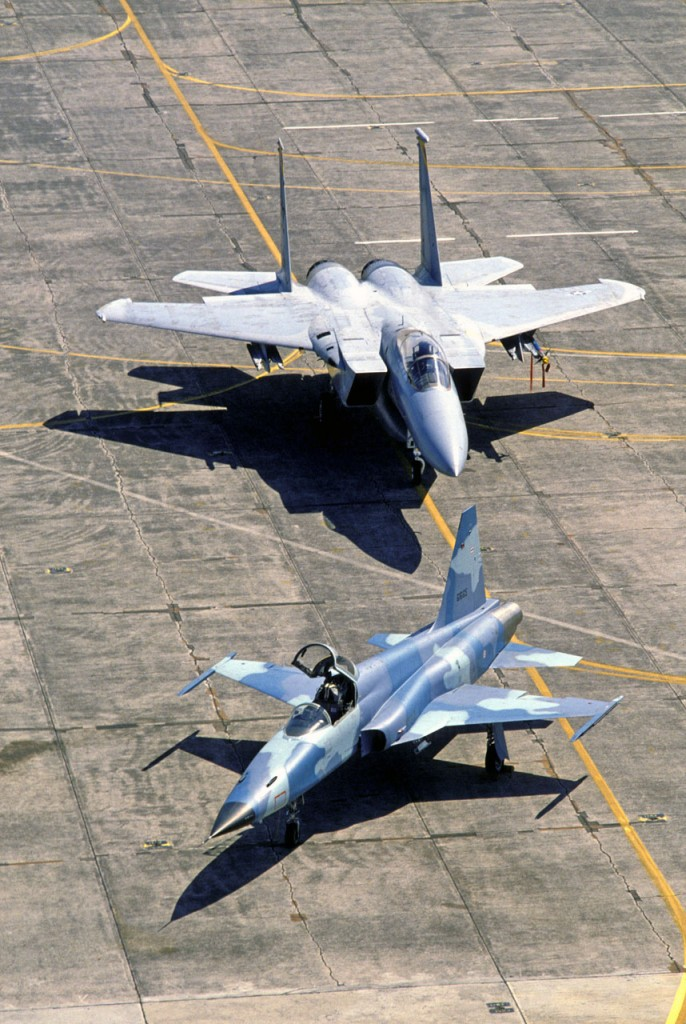 F-15 Eagle e F-5E Tiger II