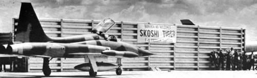 F-5 Skoshi Tiger