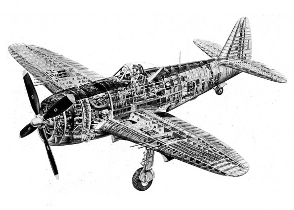 P-47 corte seccional