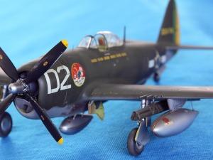 P-47D do 1º Grupo de Aviação de Caça
